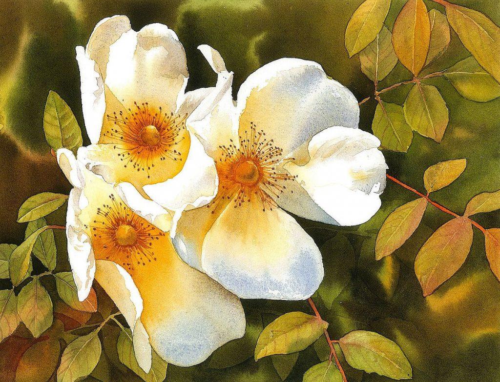 Esperoart: Moon in Virgo honors Autumn roses